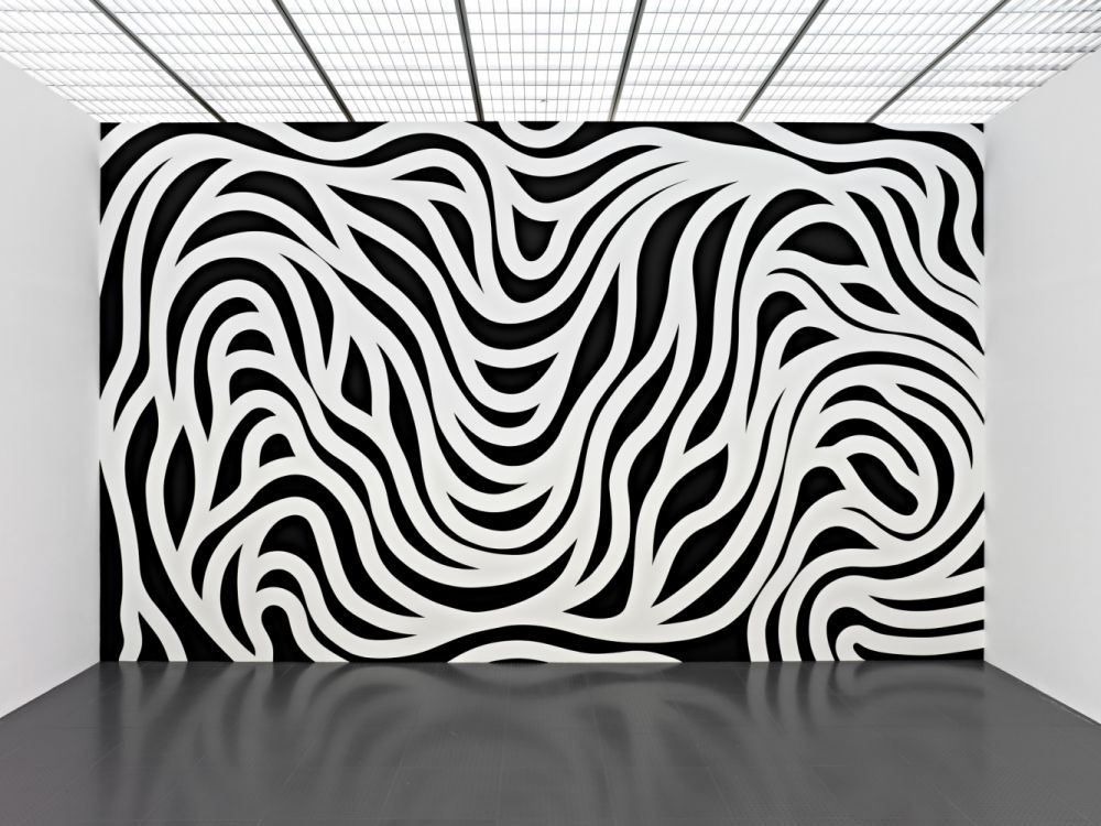 Wall Drawing #879, Loopy Doopy