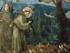 Escenes sobre la vida de sant Francesc d'Assís